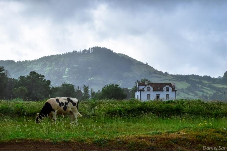 Azores_175
